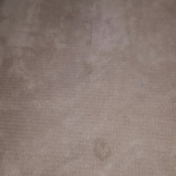 photo of instadry organic carpet cleaning san diego ca united states