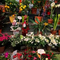 Marché aux Fleurs - Paris, France