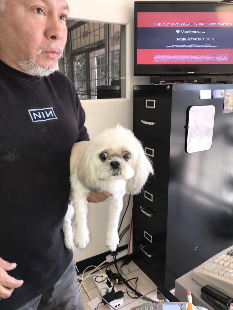 AC Dog and Cat Grooming: 5631 Telephone Rd, Houston, TX