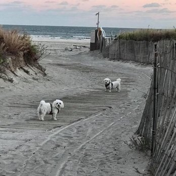 Photo Of Wildwood Crest Beach Nj United States