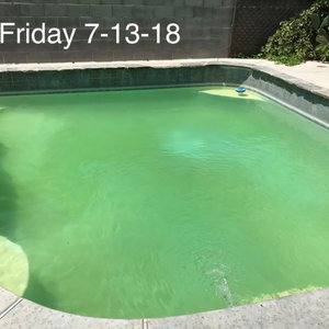 Vintage Pool Service & More - 17 Photos & 55 Reviews - Pool