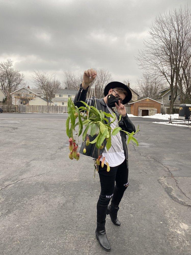 Life is Succulent: 1249 Eggert Rd, Buffalo, NY