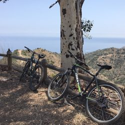 Bike Catalina 19 Photos 28 Reviews Bike Rentals Avalon Ca