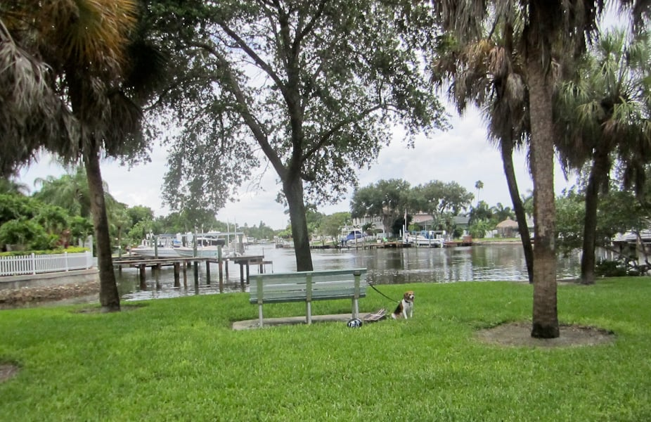 Shore Acres Mini Park: 5325 Bayou Grande Blvd NE, St. Petersburg, FL