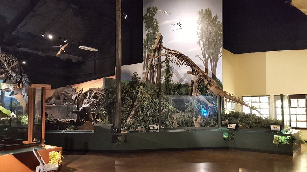 The Naranjo Museum of Natural History: 5104 S 1st St, Lufkin, TX