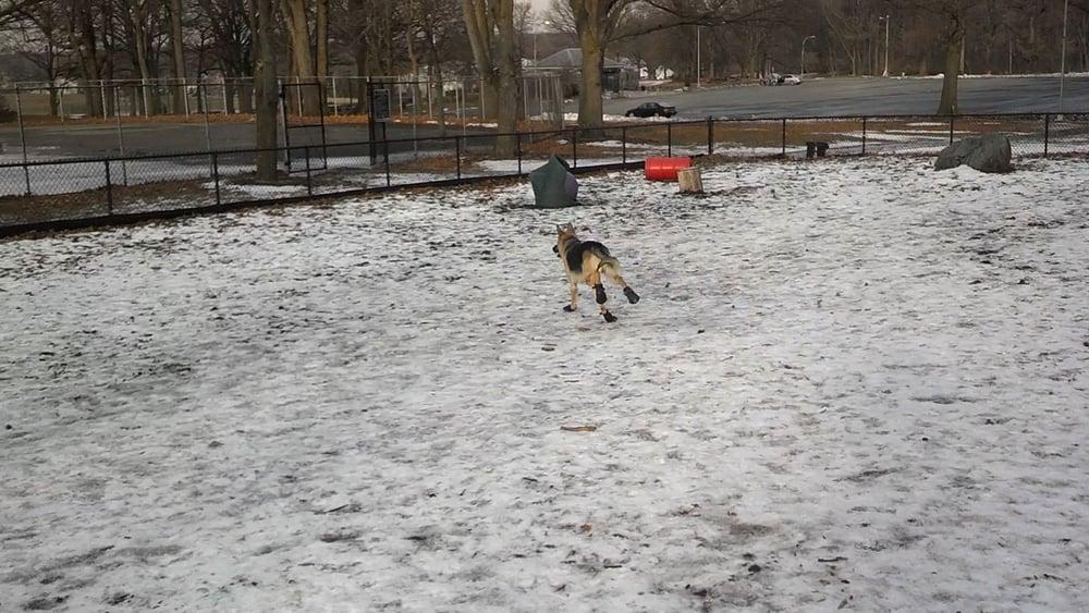 Cunningham Park Dog Run: 193RD St Aberdeen Rd, New York, NY
