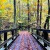 Cincinnati Nature Center: 4949 Tealtown Rd, Milford, OH