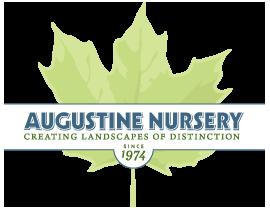 Augustine Nursery: 177 Van Kleeck Ln, Kingston, NY