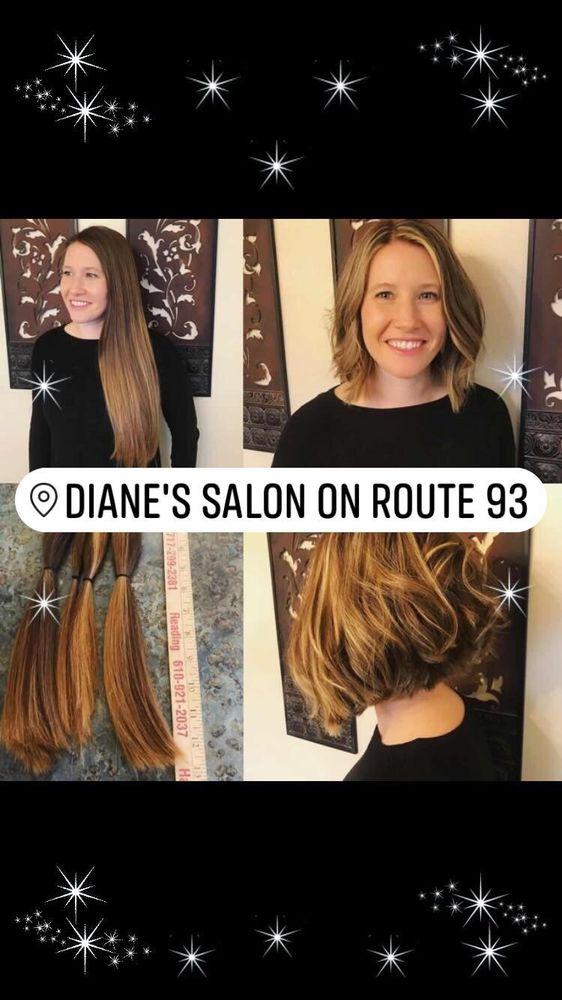 Diane's Salon On Ninety Three: 749 Rt 93, Sybertsville, PA