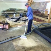 the service photo of dirt free carpet cleaning austin tx united states