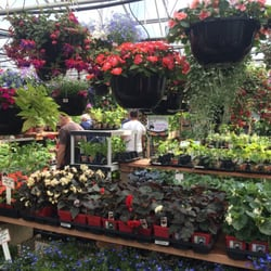 Country Fair Garden Center 32 Reviews Nurseries Gardening