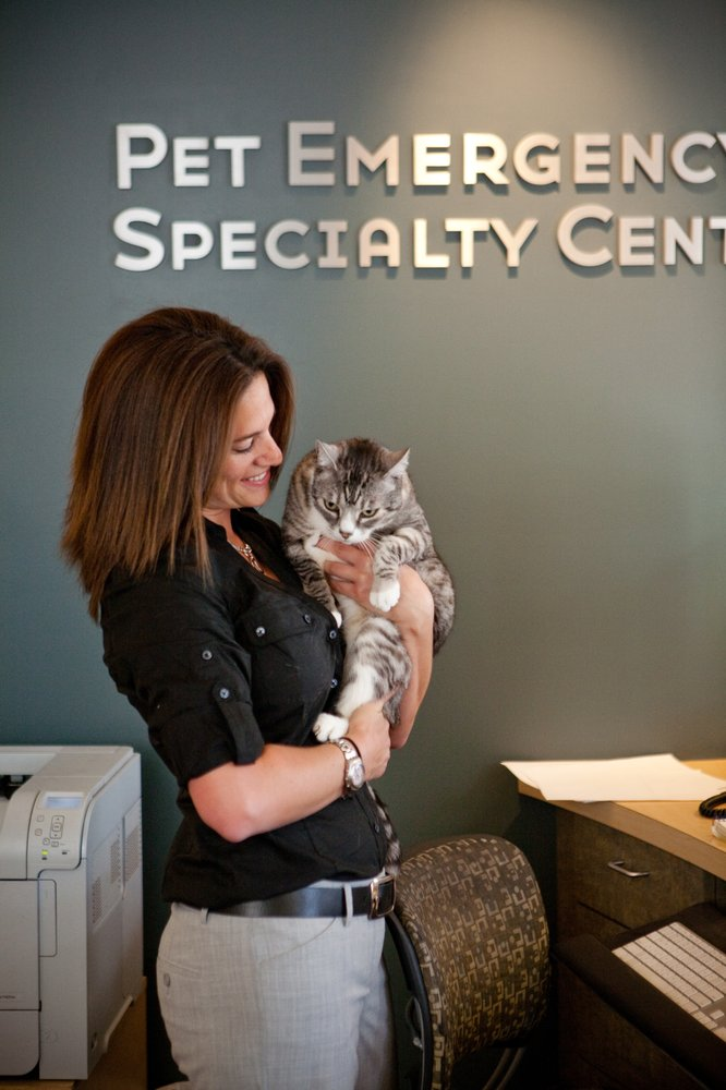 Pet Emergency & Specialty Center - East County