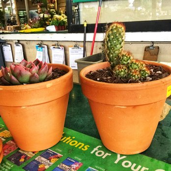 Photo Of Armstrong Garden Centers Long Beach Ca United States