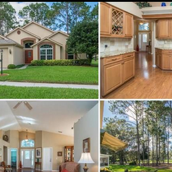 Florida Luxury Realty Real Estate Services 2144 Seven Springs