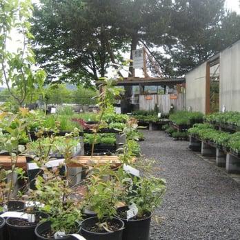 Dennis 7 Dees Landscaping Garden Center 22 Reviews Gardening Centres 10455 Sw Butner Rd