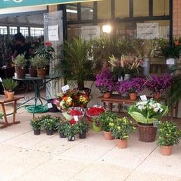 aux fleurs du sud - florists - place bellecour, bellecour, lyon