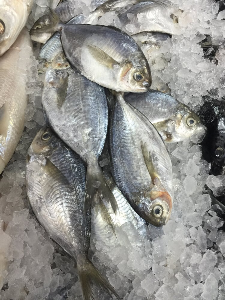 Fresh butter fish yelp for Fish market paterson nj