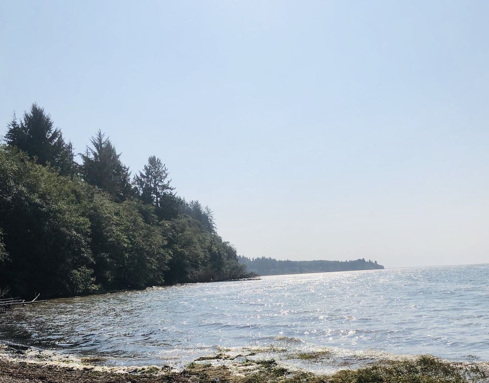Bruceport County Park: 7807 US Hwy 101, South Bend, WA