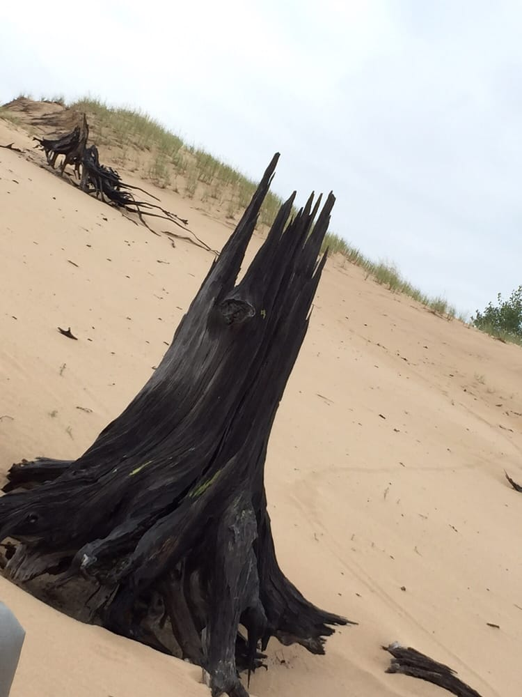 Mac Wood's Dune Rides: 629 N 18th Ave, Mears, MI