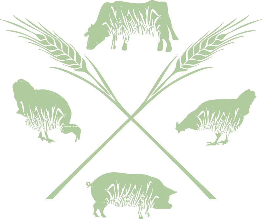 Grassway Organics Farm Store: N600 Plymouth Trl, New Holstein, WI