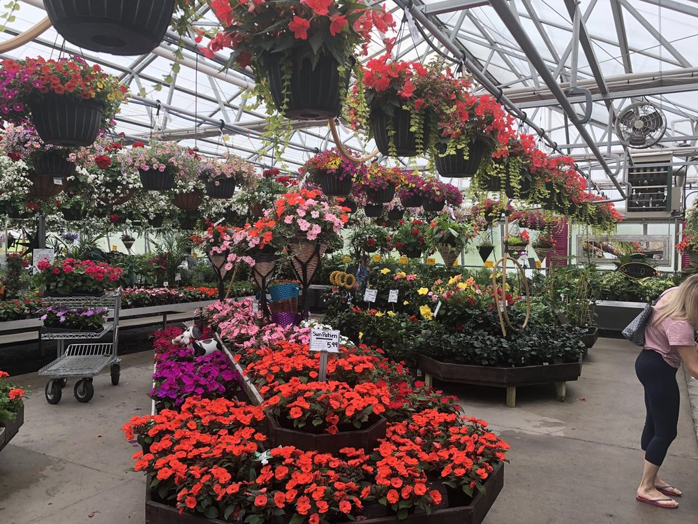 Briar Rose Greenhouses: 1581 Briertown Rd, East Earl, PA