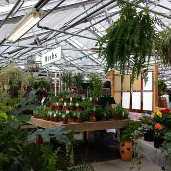 russell s garden center 37 photos 55 reviews nurseries gardening 397 boston post rd