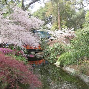 Cherry blossom festival 54 photos 13 reviews - Descanso gardens cherry blossom festival ...