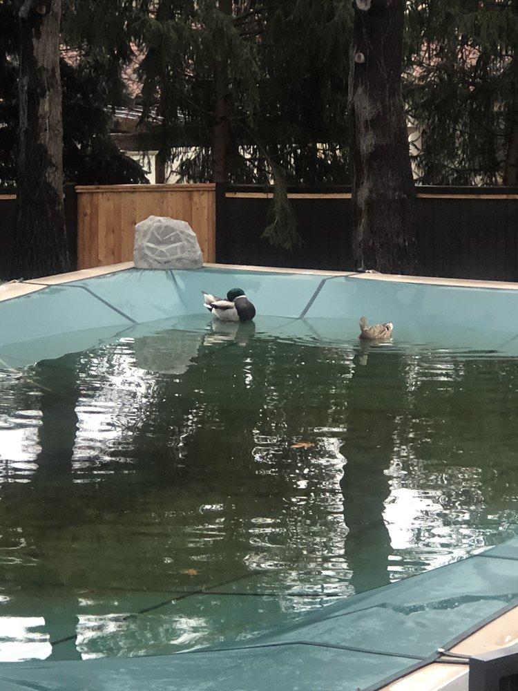 Stranger Creek Pools Inc: Linwood, KS