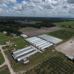Photo Of Farkas Citrus Nursery Plant City Fl United States