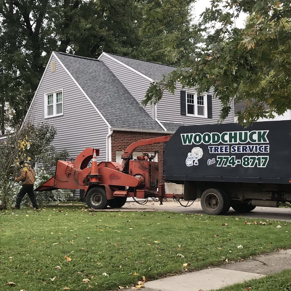 Woodchuck Tree Service: 208 Fairview Ct, Grand Island, NY
