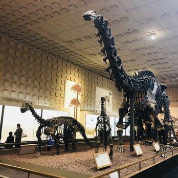 Natural History Museum Dc Phone Number