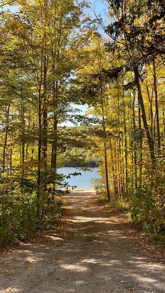 Canadice Lake Outfitters: 6773 Canadice Lake Rd, Springwater, NY