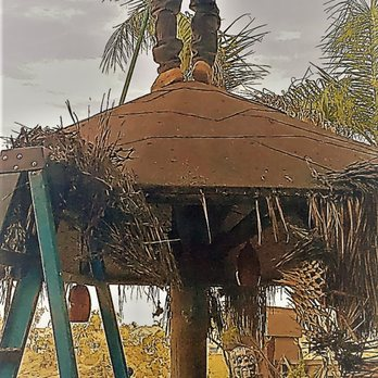 Photo Of Palapa Guy Murrieta Ca United States Removal Swept And