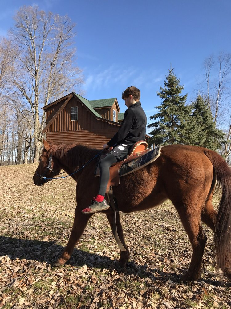 Larry's Riding Stables