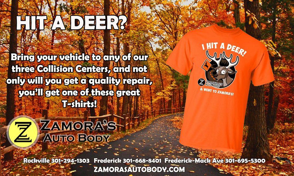 Zamora's Auto Body: 4612 Wedgewood Blvd, Frederick, MD