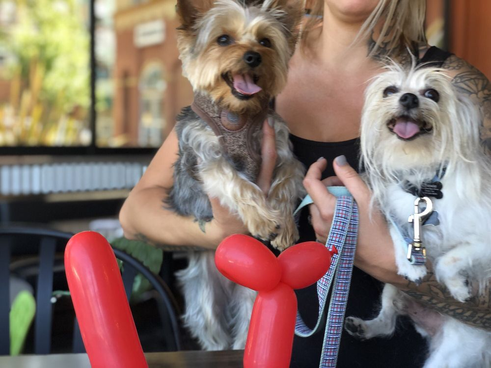 Dog & Hydrant: 9240 Old Redwood Hwy, Windsor, CA