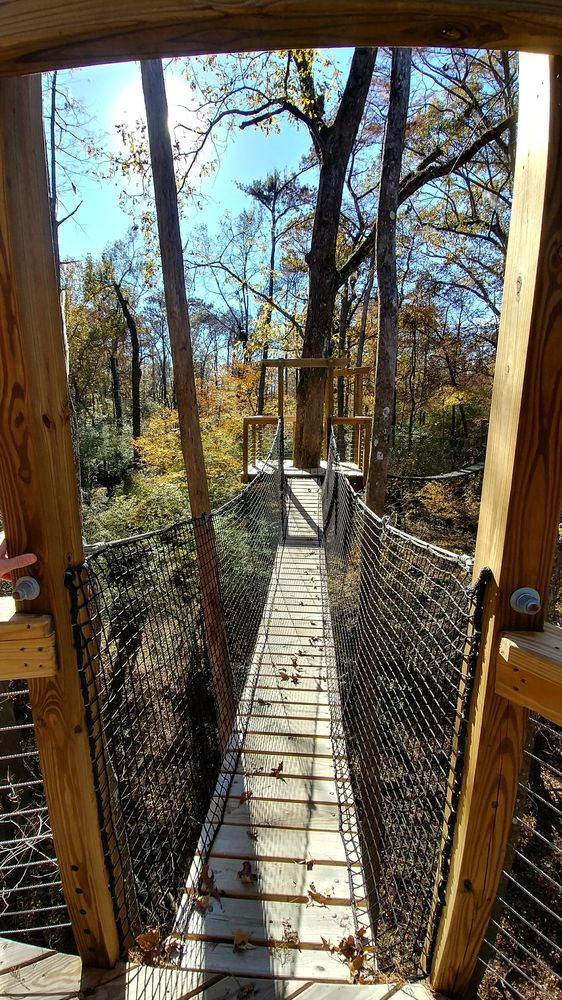 Lynches River State Park: 1110 Ben Gause Rd, Coward, SC