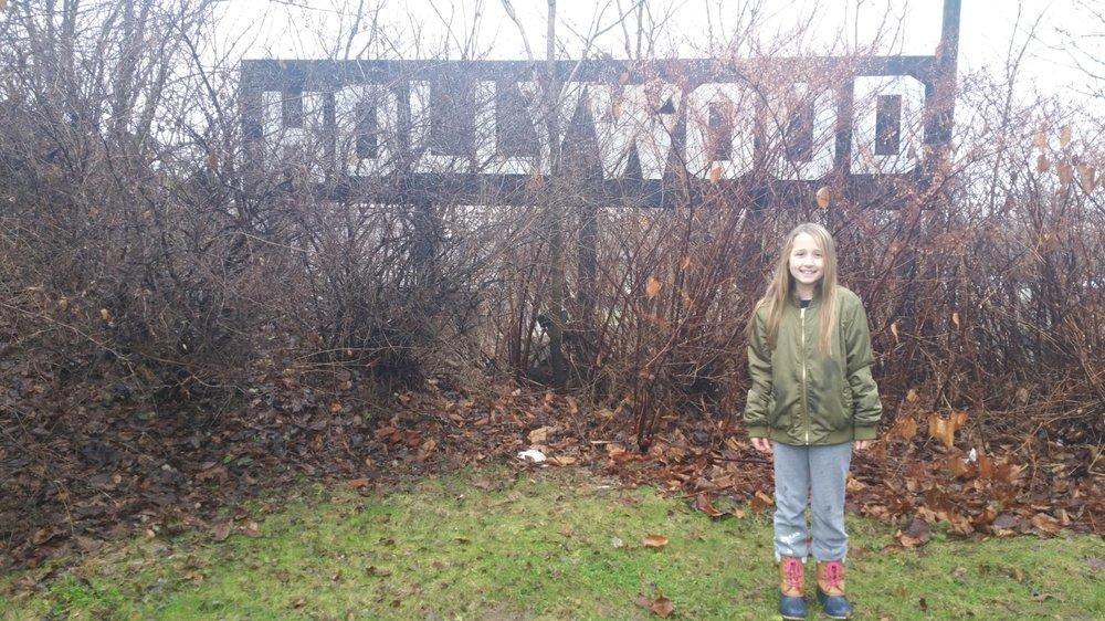 Hollywood Hollywood: 208 Ivy St, Weirton, WV