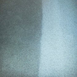 ... Winter Garden FL United States Source · StainLifters Carpet Cleaning 12  Photos Carpet Cleaning 15231