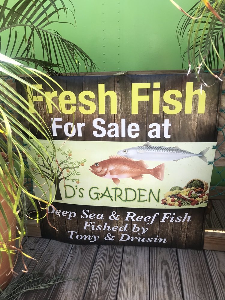 D's Garden: Carretera PR-250 S/N, Culebra, PR