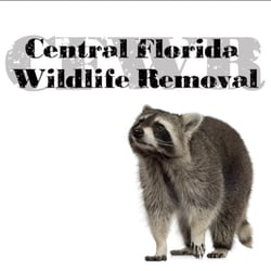 removal of wildlife