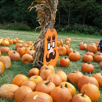 Photo Of Burger Farm U0026 Garden Center   Cincinnati, OH, United States.  Pumpkin