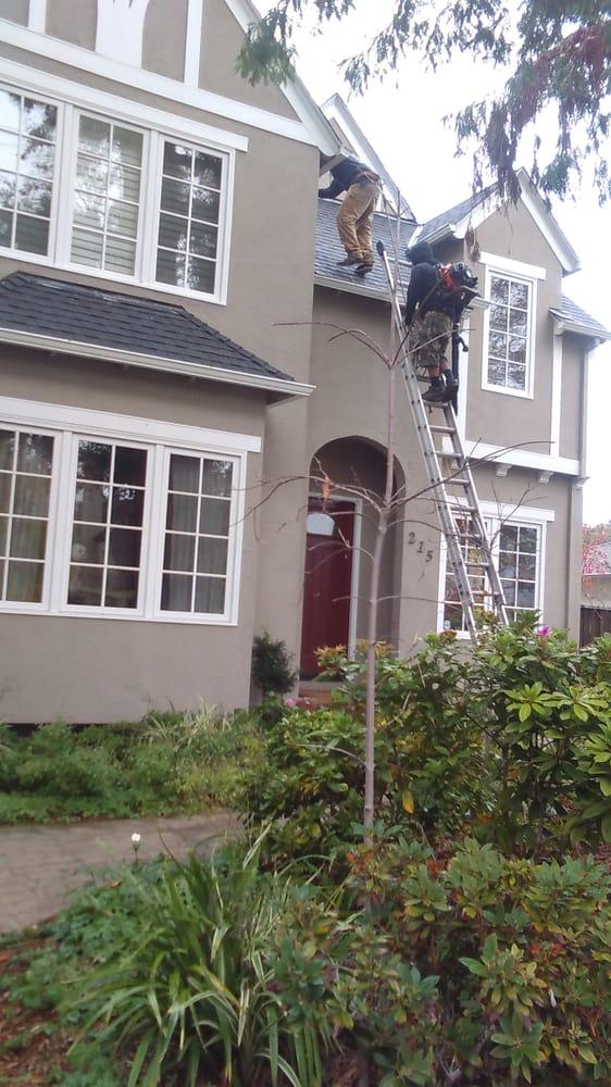 M&J Windowcare & Handyman servies