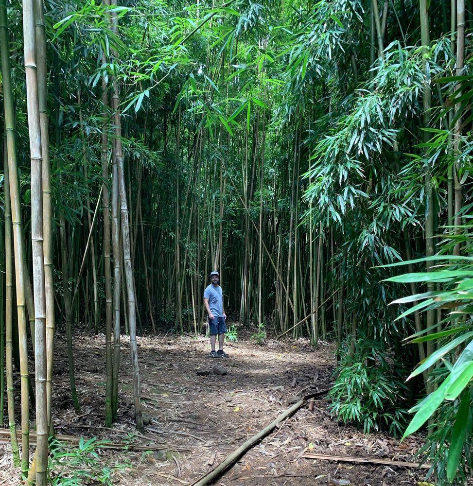 Pipiwai Trail: Mile Marker 41 Hana Hwy, Hana,, HI
