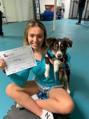 Freedom Tails Dog Training Gainesville, VA Pet Training