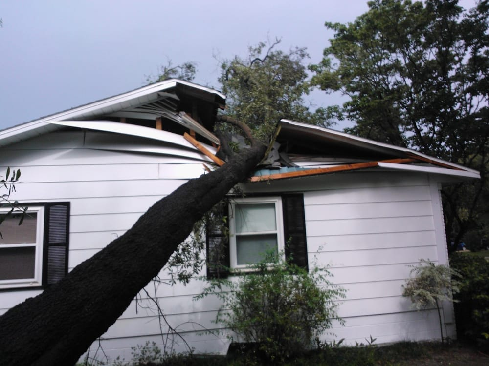 Daughtry Tree Service: 26106 NW 3rd Ave, Newberry, FL