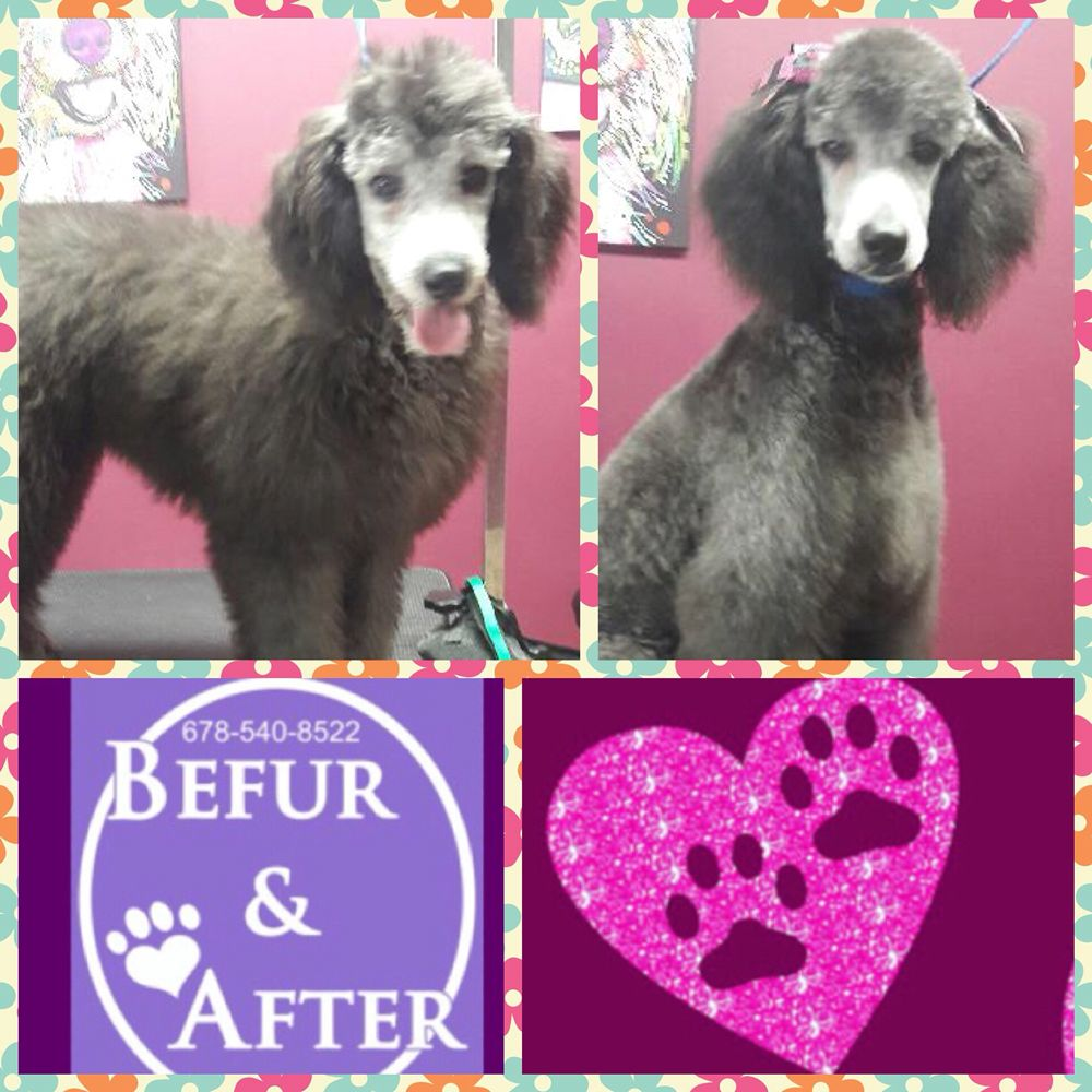 Befur and After