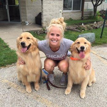 Tops Dog Training Grayslake Il