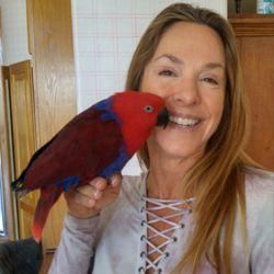 Animal & Bird Clinic of Mission Viejo - 41 Photos & 98 Reviews