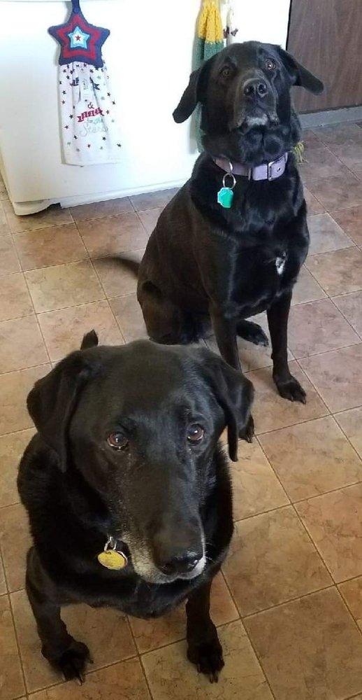 Photo of Cedar Grove Veterinary Services: Cedar Grove, WI
